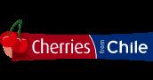 Logo 1 – 33